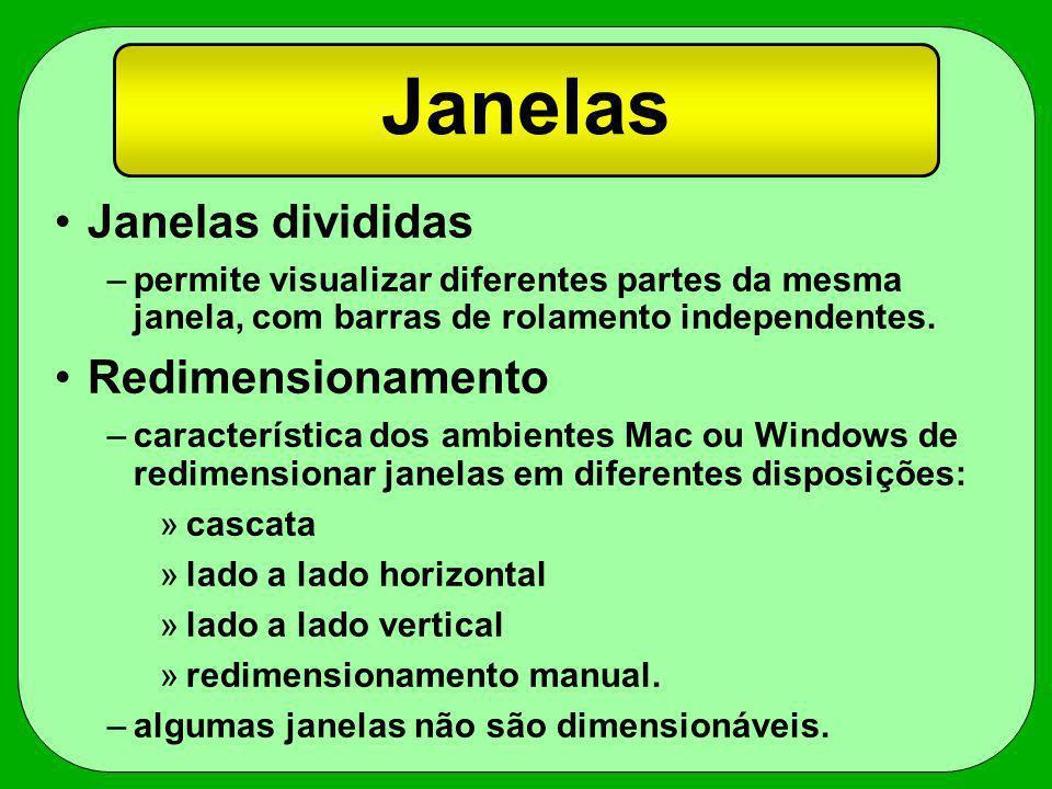 Janelas Janelas divididas –permite visualizar diferentes partes da mesma janela, com barras de rolamento independentes. Redimensionamento –característ