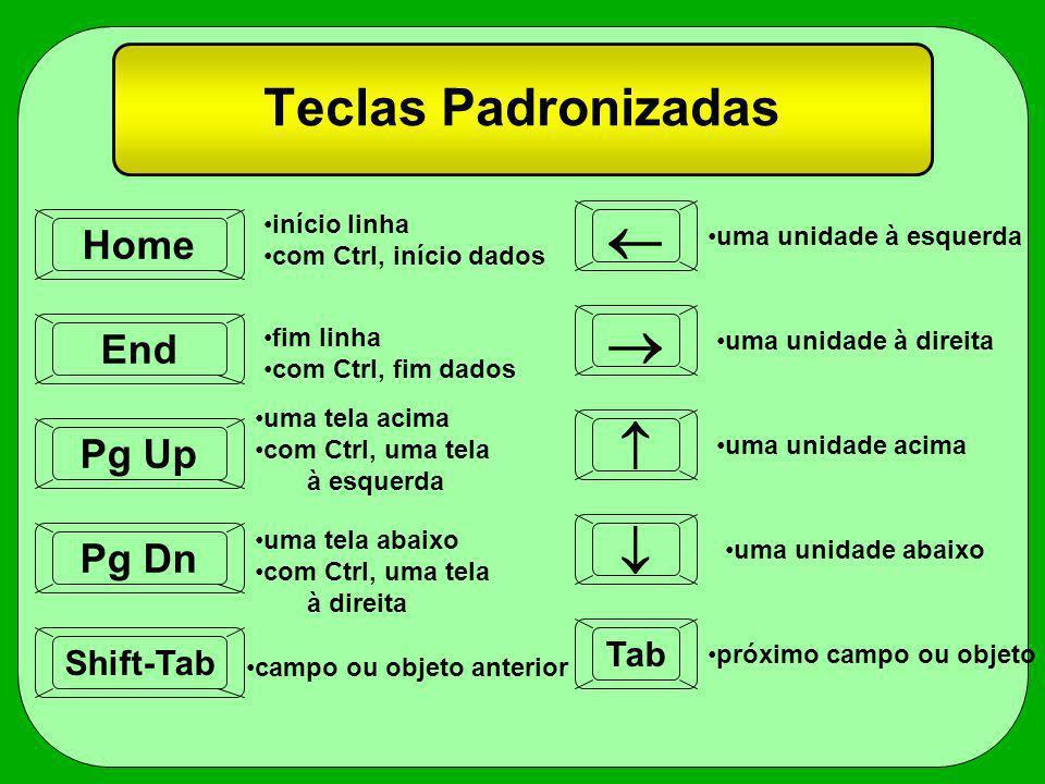 Teclas Padronizadas Home Pg Up Shift-Tab Pg Dn Tab End início linha com Ctrl, início dados fim linha com Ctrl, fim dados uma tela acima com Ctrl, uma