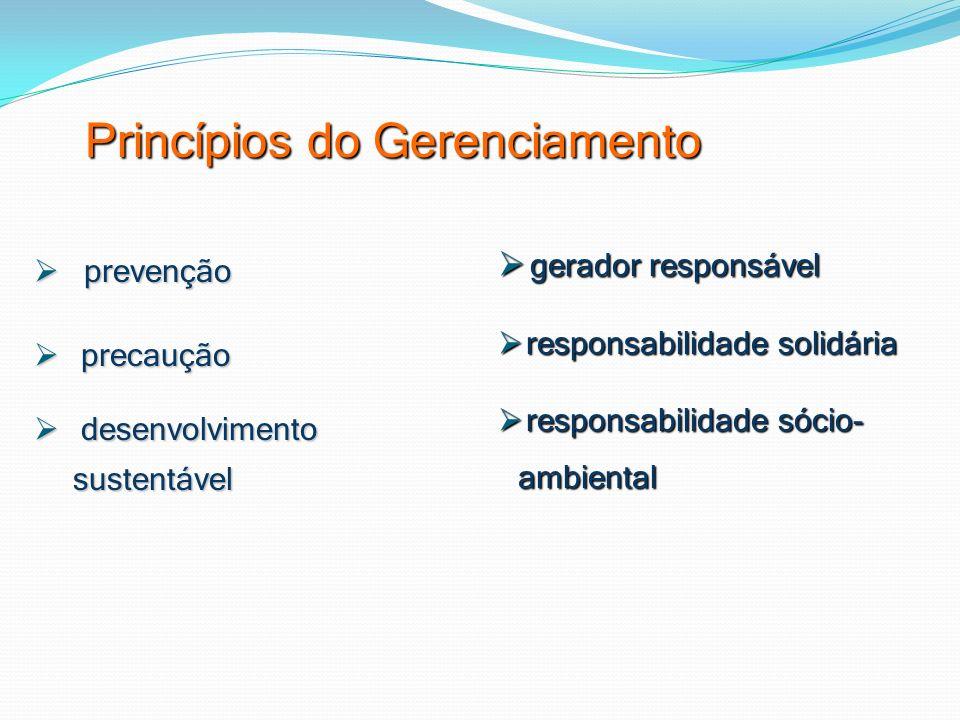 Princípios do Gerenciamento prevenção prevenção precaução precaução desenvolvimento sustentável desenvolvimento sustentável gerador responsável gerado