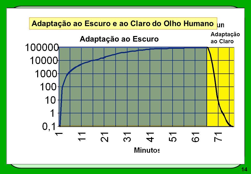 14 Adaptação ao Escuro Adaptação ao Claro Adaptação ao Escuro e ao Claro do Olho Humano