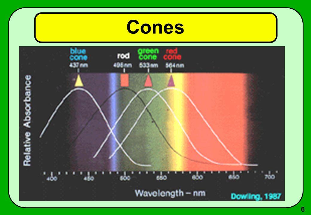 27 Uso de cores Cores e tamanho –Cores são difíceis de distinguir em pequenas áreas.