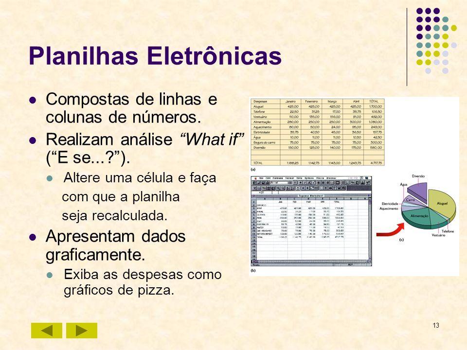 13 Planilhas Eletrônicas Compostas de linhas e colunas de números. Realizam análise What if (E se...?). Altere uma célula e faça com que a planilha se