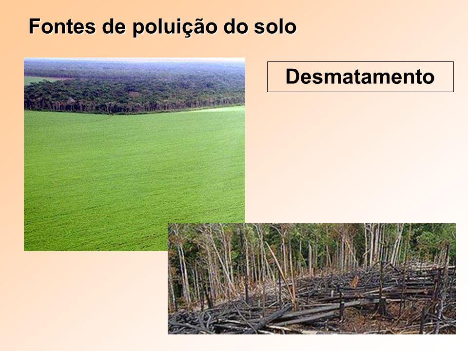 Fontes de poluição do solo Desmatamento