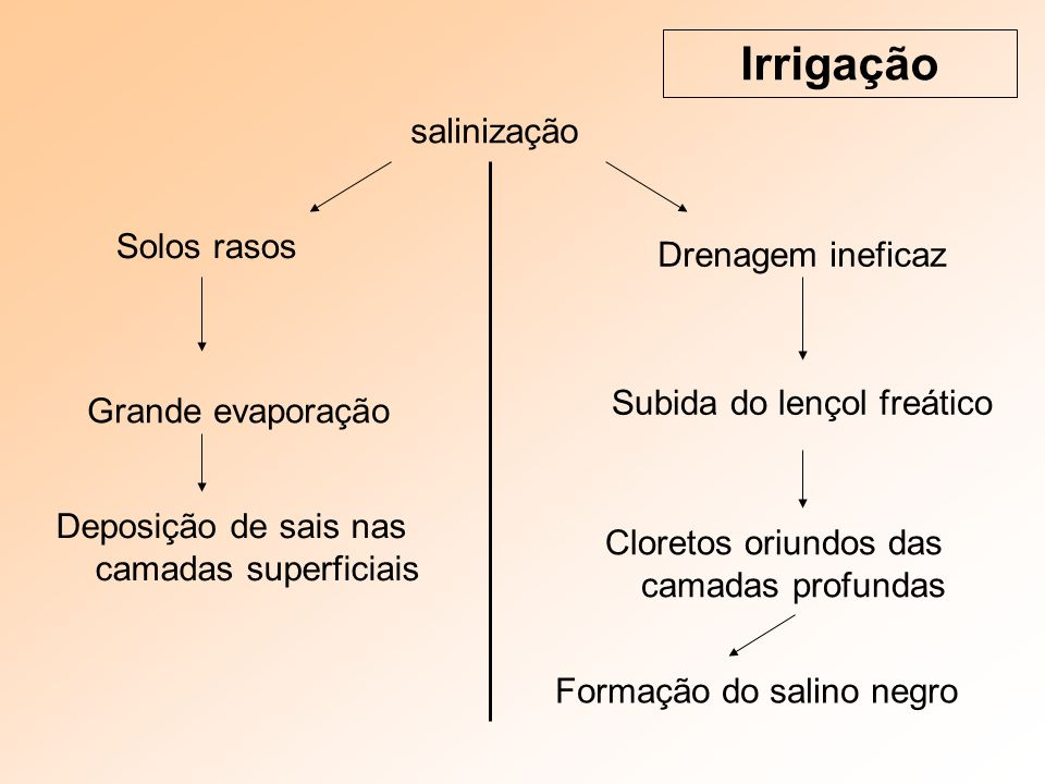 salinização Irrigação Deposição de sais nas camadas superficiais Solos rasos Drenagem ineficaz Grande evaporação Subida do lençol freático Cloretos oriundos das camadas profundas Formação do salino negro