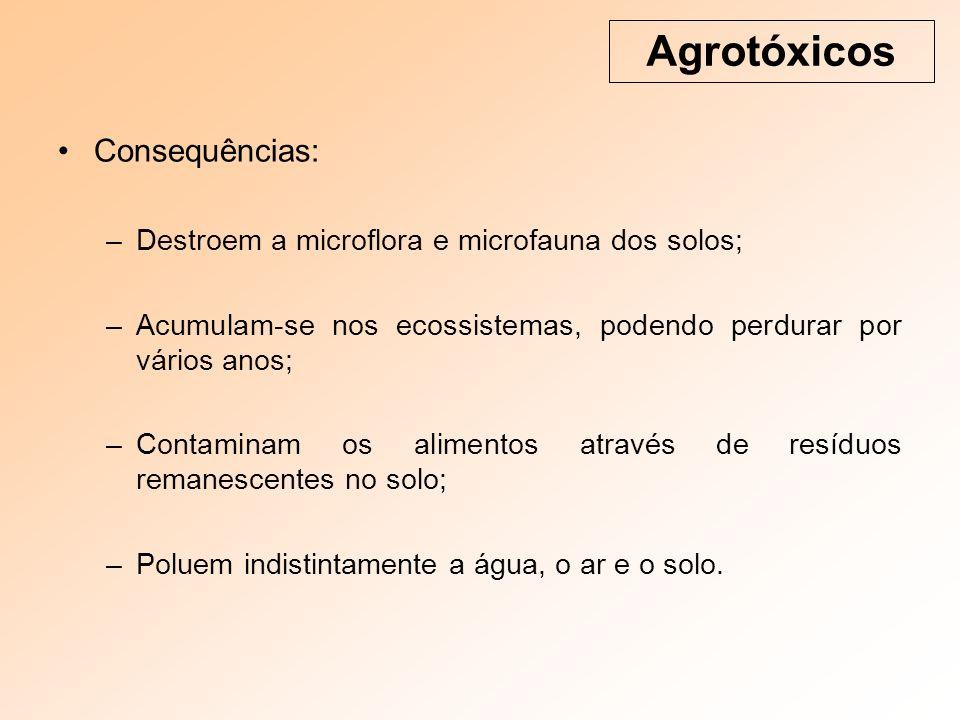 Consequências: –Destroem a microflora e microfauna dos solos; –Acumulam-se nos ecossistemas, podendo perdurar por vários anos; –Contaminam os alimentos através de resíduos remanescentes no solo; –Poluem indistintamente a água, o ar e o solo.