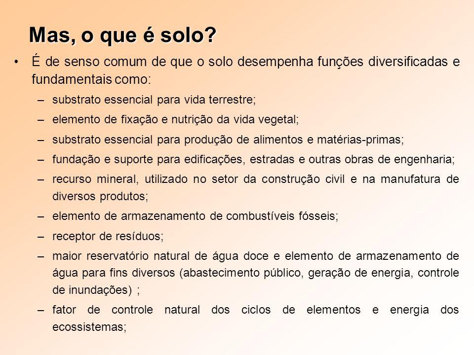 Mas, o que é solo? É de senso comum de que o solo desempenha funções diversificadas e fundamentais como: –substrato essencial para vida terrestre; –el