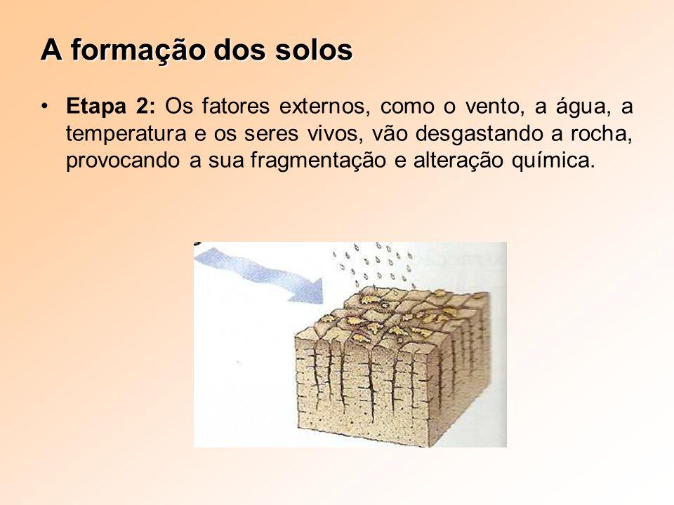 Etapa 2: Os fatores externos, como o vento, a água, a temperatura e os seres vivos, vão desgastando a rocha, provocando a sua fragmentação e alteração