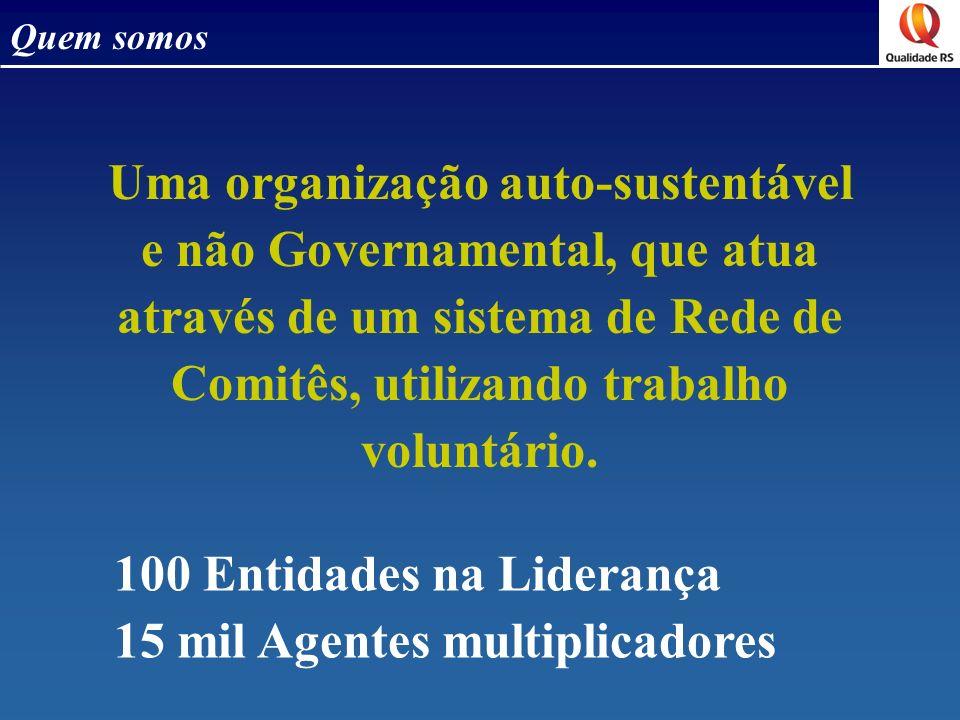 Quem somos Uma organização auto-sustentável e não Governamental, que atua através de um sistema de Rede de Comitês, utilizando trabalho voluntário.