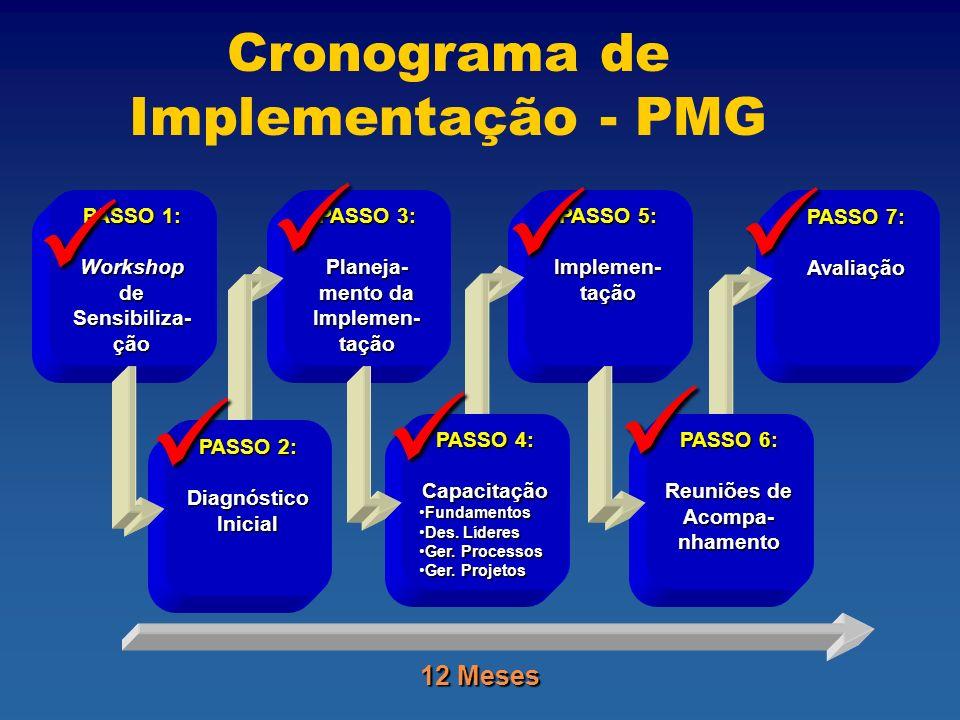 Cronograma de Implementação - PMG PASSO 7: Avaliação PASSO 6: Reuniões de Acompa- nhamento PASSO 5: Implemen- tação PASSO 4: Capacitação FundamentosFundamentos Des.