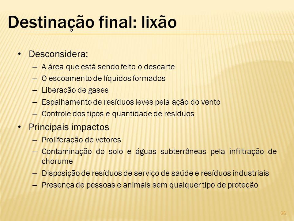 Destinação final: lixão Desconsidera: – A área que está sendo feito o descarte – O escoamento de líquidos formados – Liberação de gases – Espalhamento