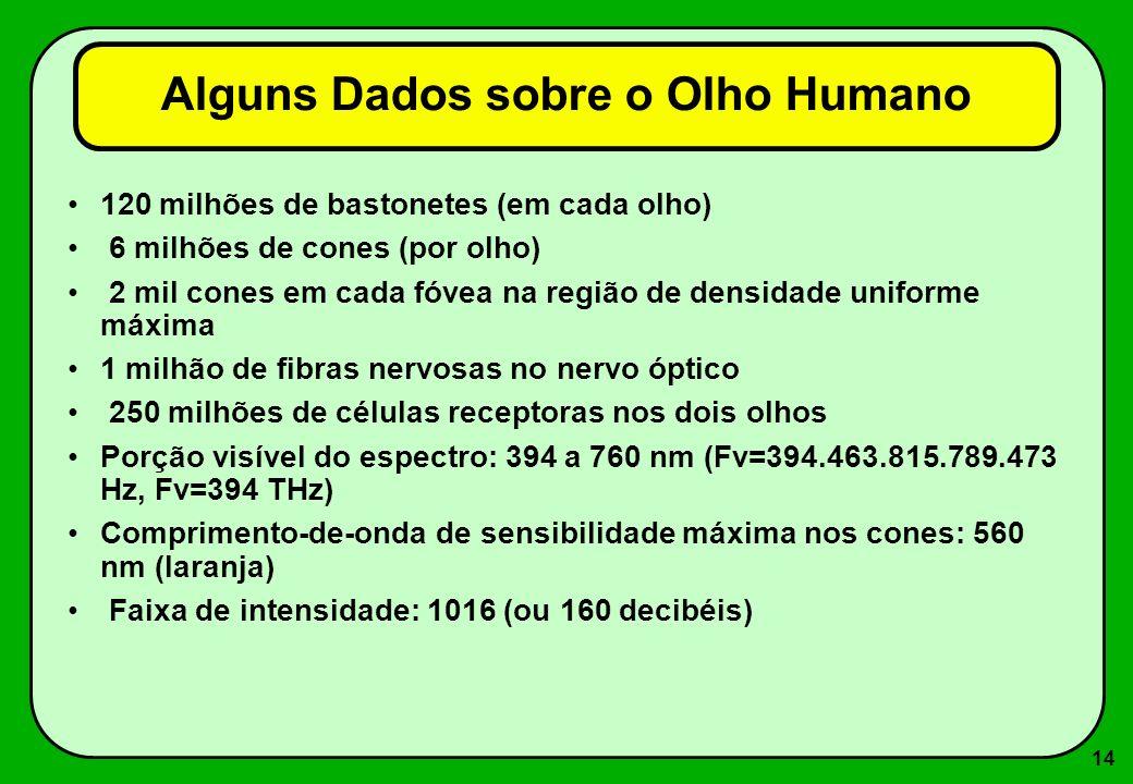 14 Alguns Dados sobre o Olho Humano 120 milhões de bastonetes (em cada olho) 6 milhões de cones (por olho) 2 mil cones em cada fóvea na região de dens