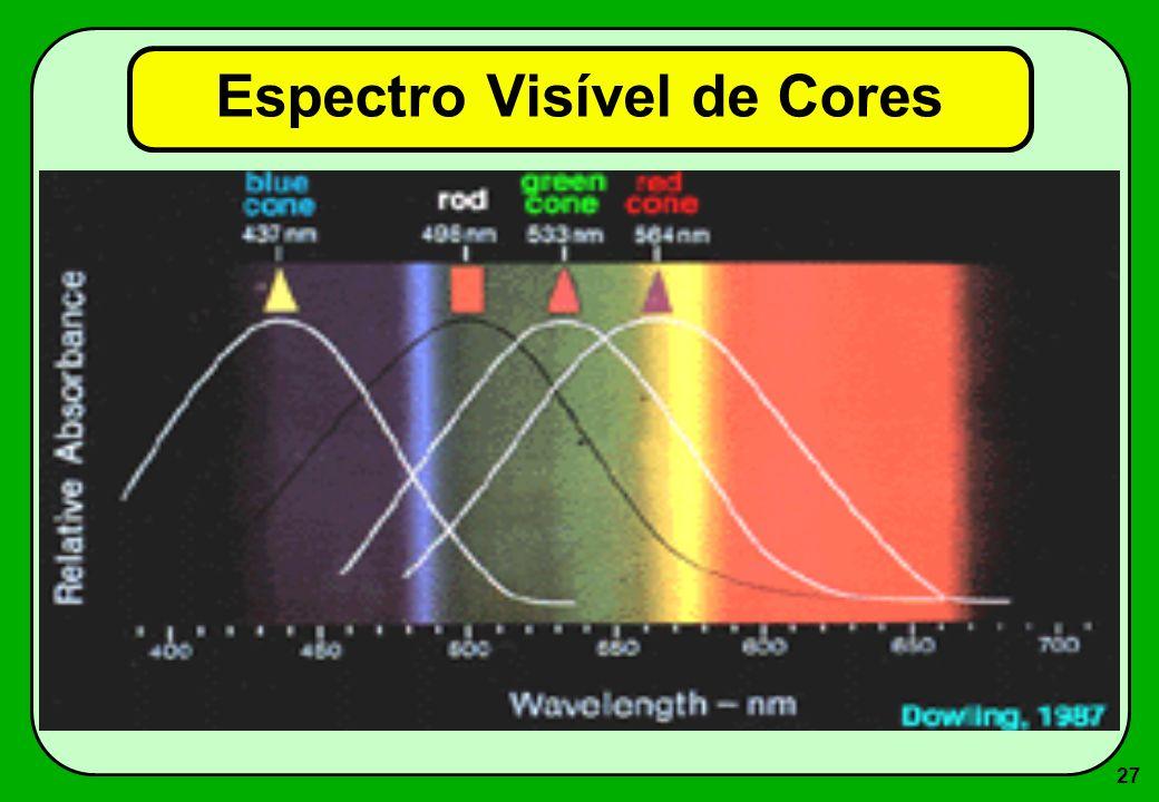 27 Espectro Visível de Cores