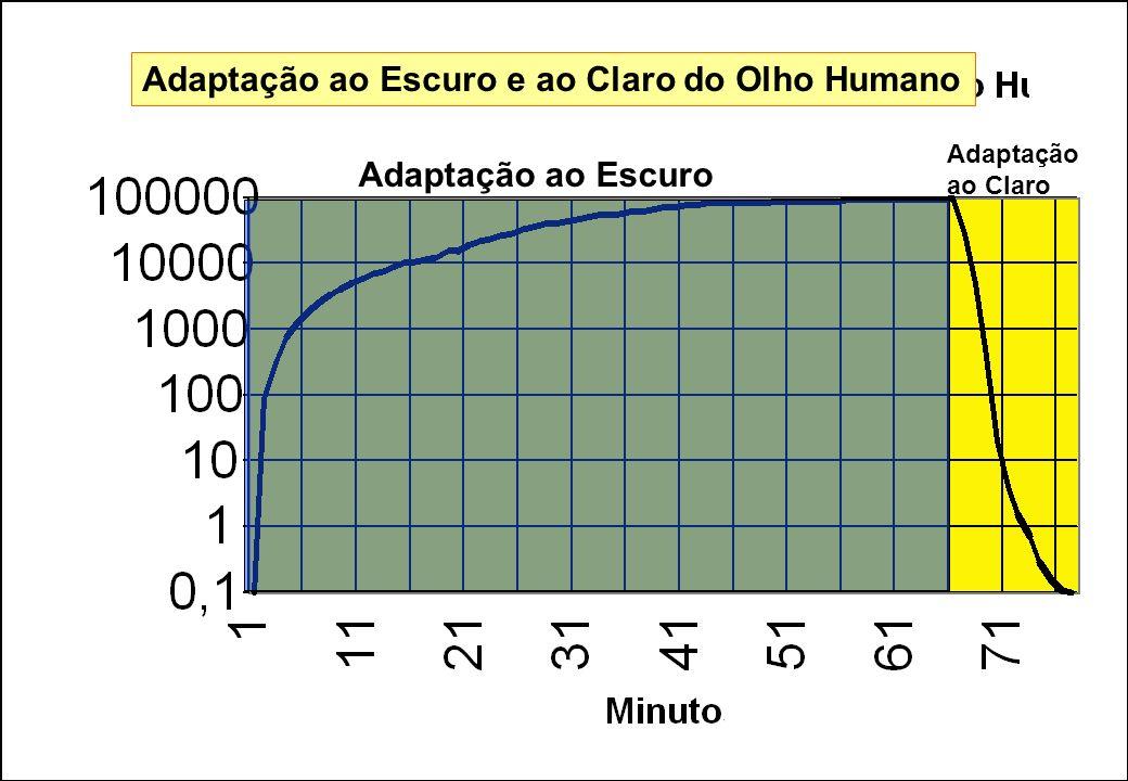 65 Adaptação ao Escuro Adaptação ao Claro Adaptação ao Escuro e ao Claro do Olho Humano
