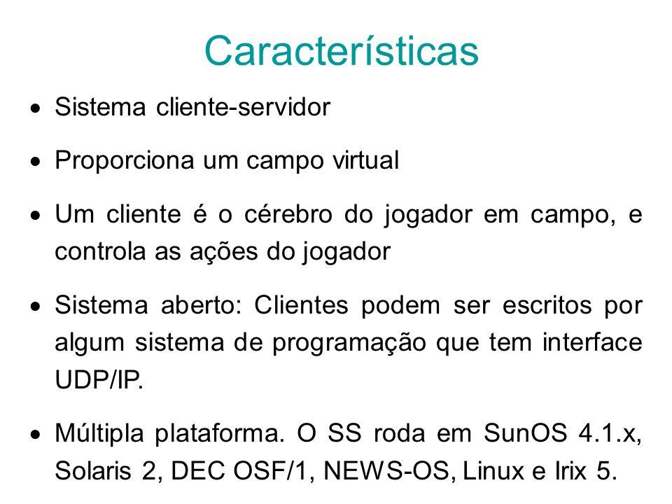 Características Sistema cliente-servidor Proporciona um campo virtual Um cliente é o cérebro do jogador em campo, e controla as ações do jogador Siste
