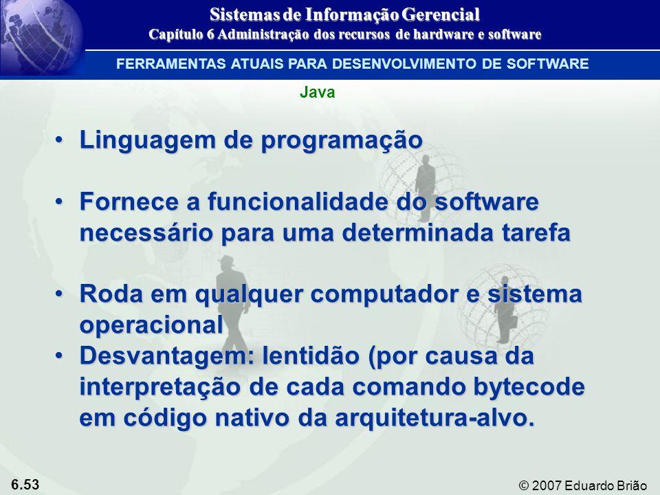 6.53 © 2007 Eduardo Brião Linguagem de programaçãoLinguagem de programação Fornece a funcionalidade do software necessário para uma determinada tarefa