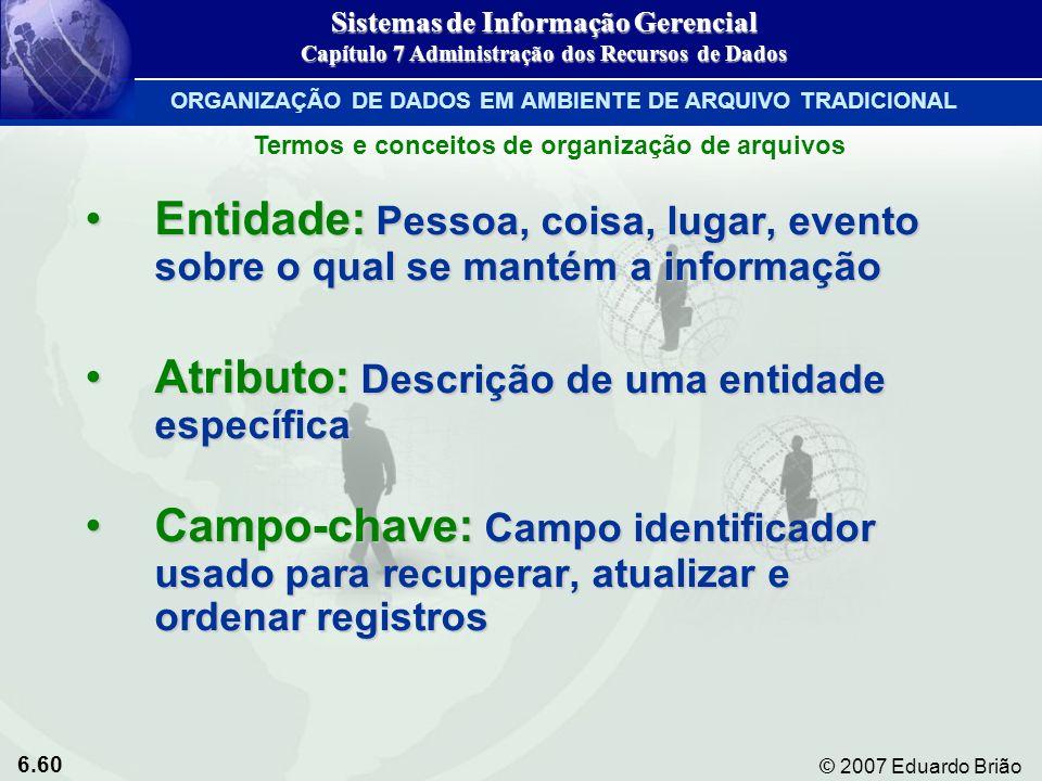 6.60 © 2007 Eduardo Brião Entidade: Pessoa, coisa, lugar, evento sobre o qual se mantém a informaçãoEntidade: Pessoa, coisa, lugar, evento sobre o qua