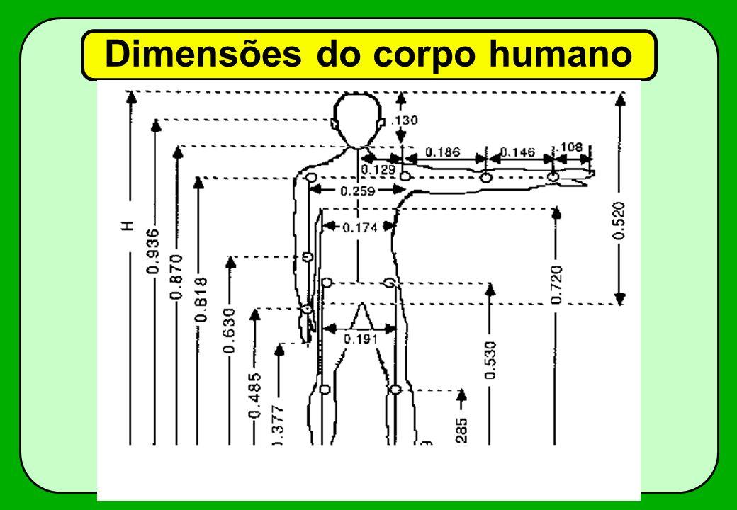 Dimensões do corpo humano