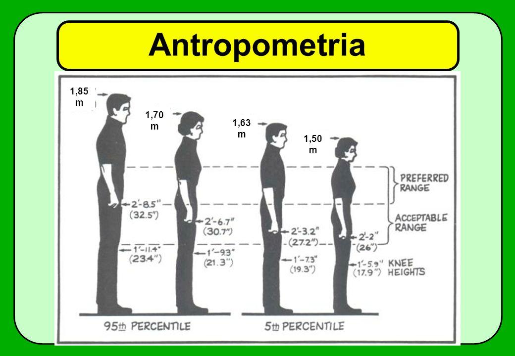 Antropometria 1,85 m 1,50 m 1,63 m 1,70 m