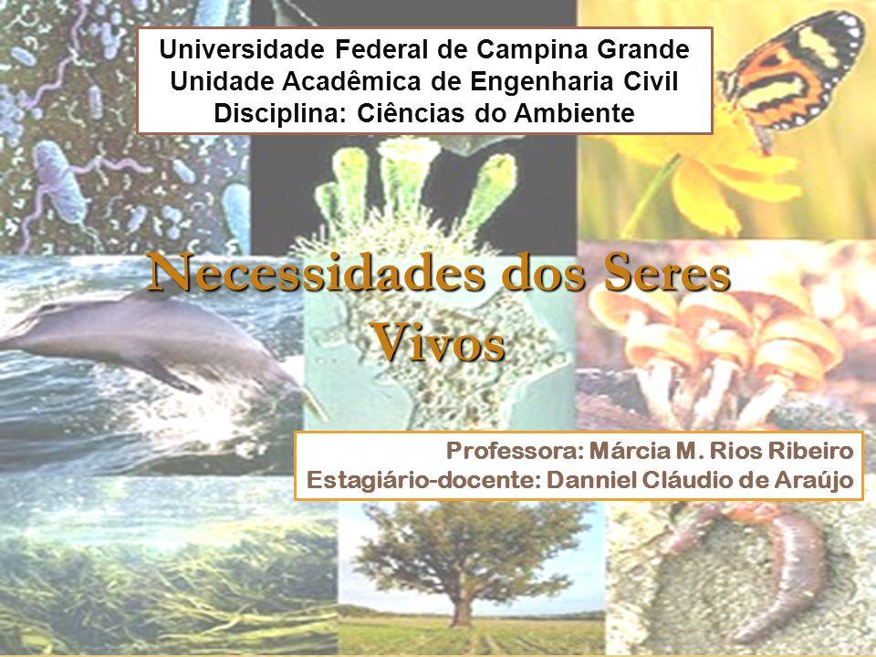 Professora: Márcia M. Rios Ribeiro Estagiário-docente: Danniel Cláudio de Araújo Universidade Federal de Campina Grande Unidade Acadêmica de Engenhari
