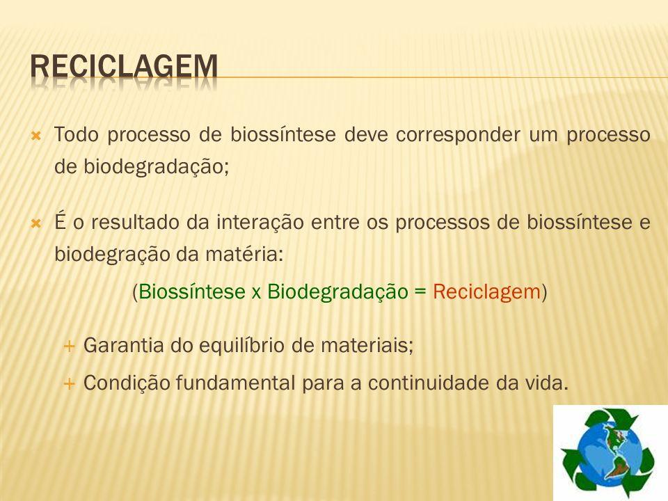 Todo processo de biossíntese deve corresponder um processo de biodegradação; É o resultado da interação entre os processos de biossíntese e biodegraçã