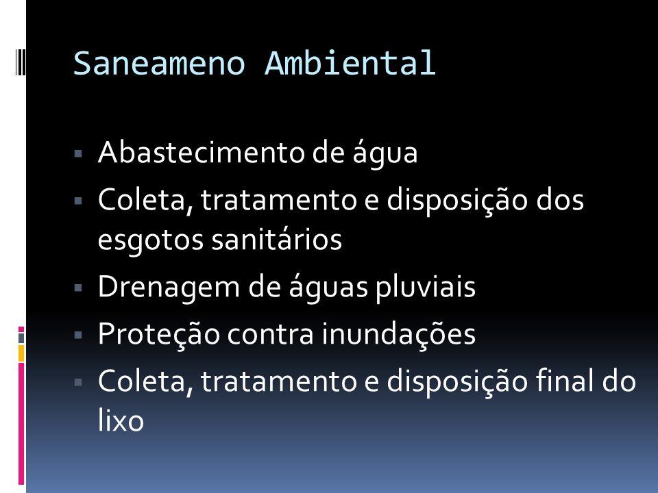 Saneameno Ambiental Controle de insetos Poluição atmosférica Higiene das habitações Higiene industrial Educação sanitária