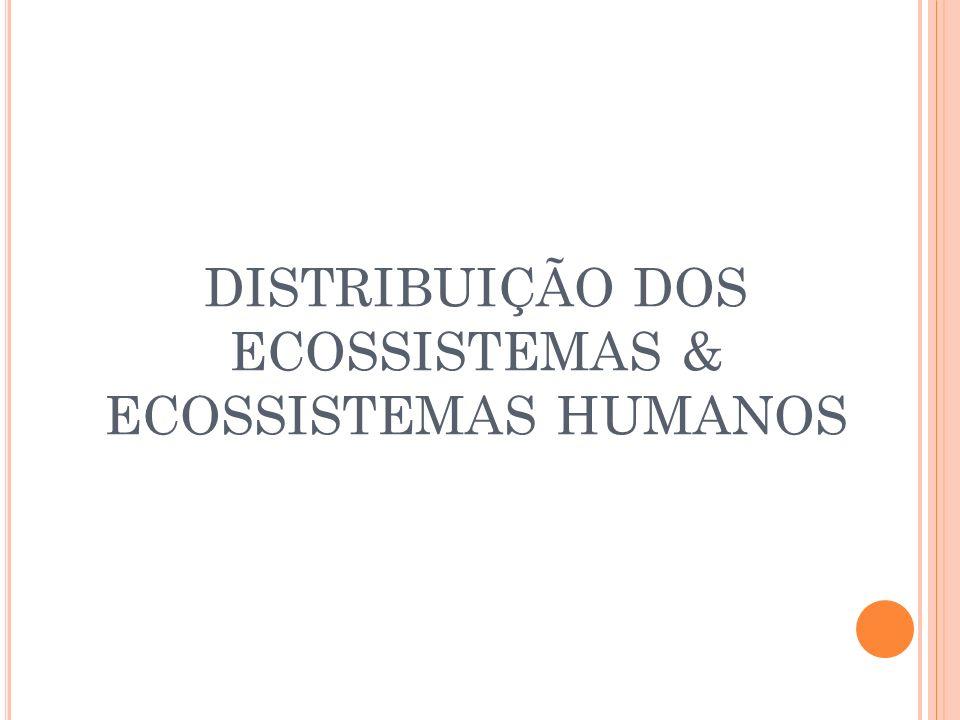 FOME E POBREZA DESEQUILIBRIOS NOS ECOSSISTEMAS HUMANOS