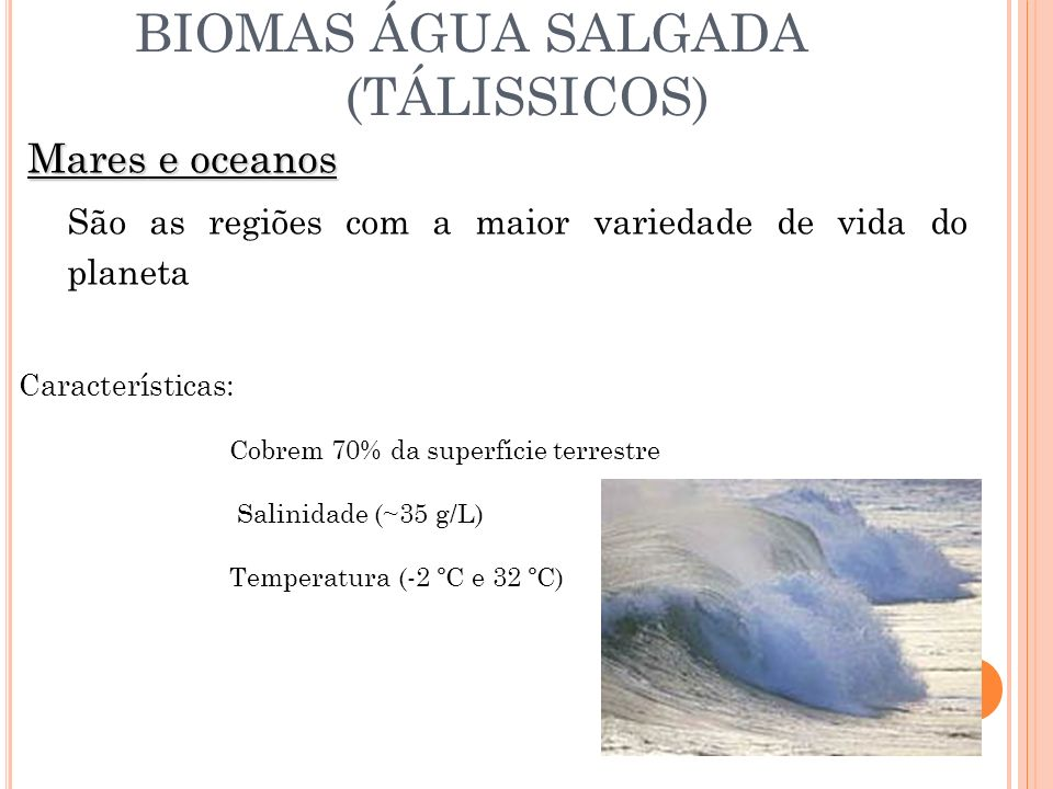 BIOMAS DE ÁGUA DOCE (LÍMNICOS) Rios, riachos, lagoas, lagos, represas Características: Temperatura Turbidez Movimento das águas