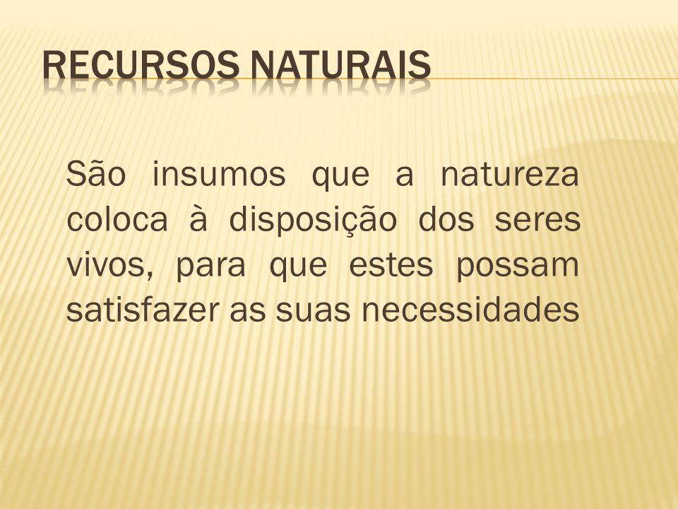 São insumos que a natureza coloca à disposição dos seres vivos, para que estes possam satisfazer as suas necessidades