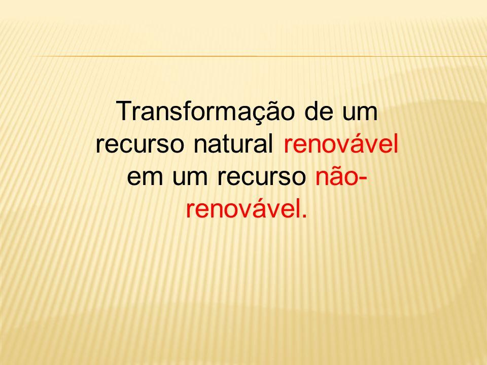 Transformação de um recurso natural renovável em um recurso não- renovável.