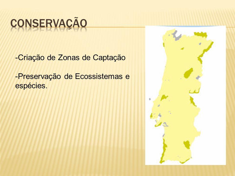 -Criação de Zonas de Captação -Preservação de Ecossistemas e espécies.