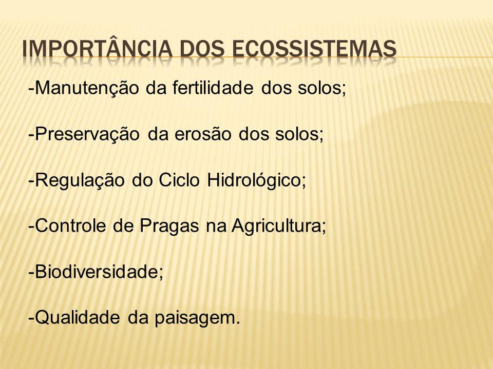 -Manutenção da fertilidade dos solos; -Preservação da erosão dos solos; -Regulação do Ciclo Hidrológico; -Controle de Pragas na Agricultura; -Biodiversidade; -Qualidade da paisagem.