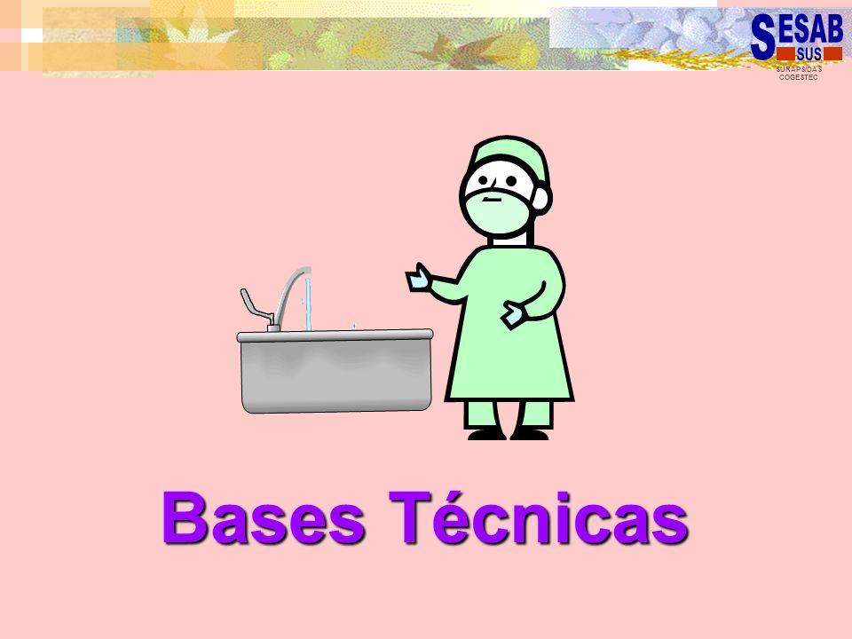 SURAPS/DAS COGESTEC Bases Técnicas
