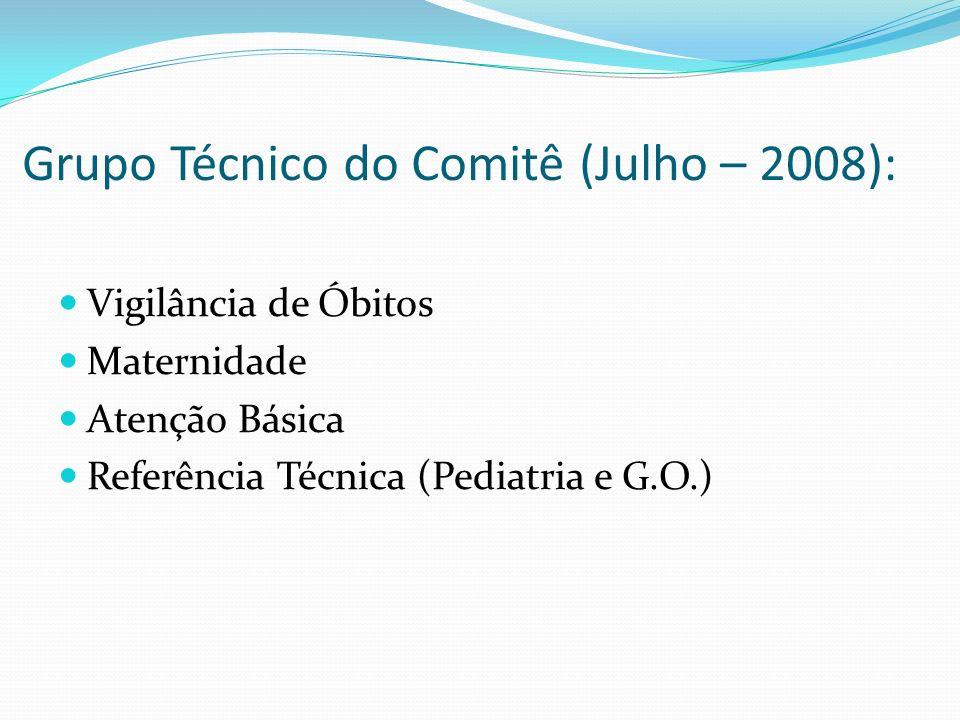 Grupo Técnico do Comitê (Julho – 2008): Vigilância de Óbitos Maternidade Atenção Básica Referência Técnica (Pediatria e G.O.)