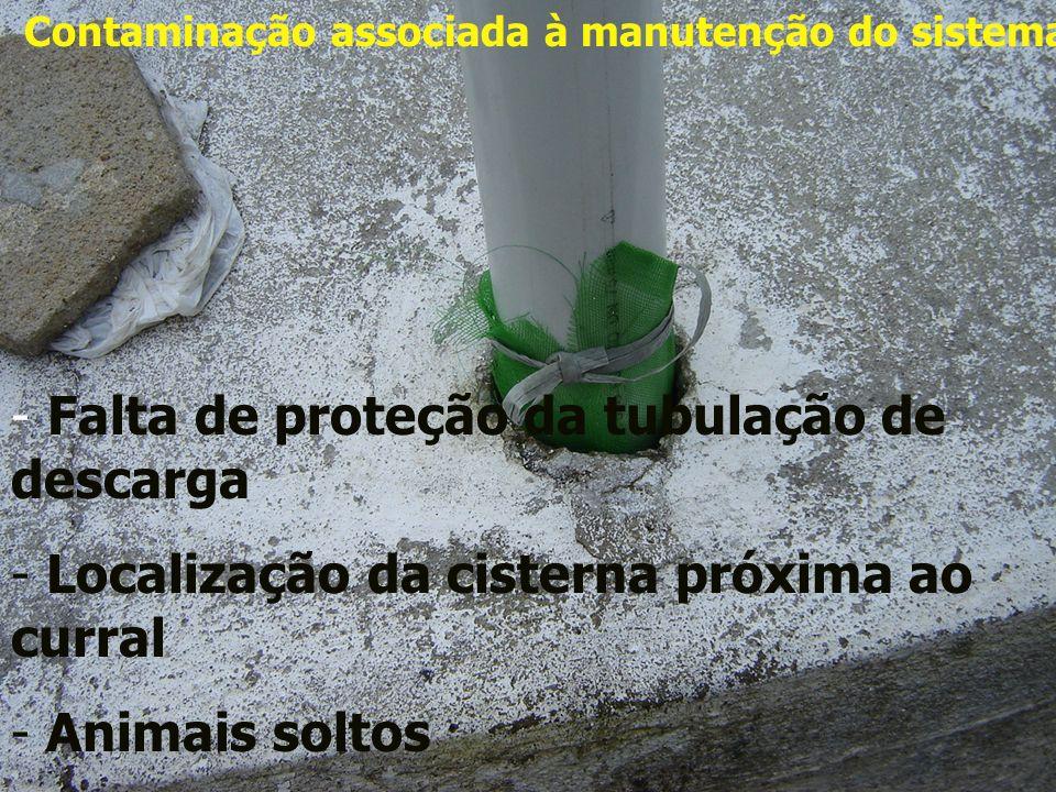 Contaminação associada à manutenção do sistema - Falta de proteção da tubulação de descarga - Localização da cisterna próxima ao curral - Animais solt