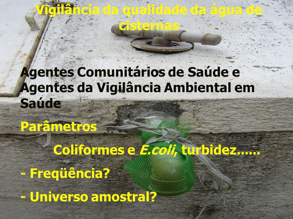 Vigilância da qualidade da água de cisternas Agentes Comunitários de Saúde e Agentes da Vigilância Ambiental em Saúde Parâmetros Coliformes e E.coli,