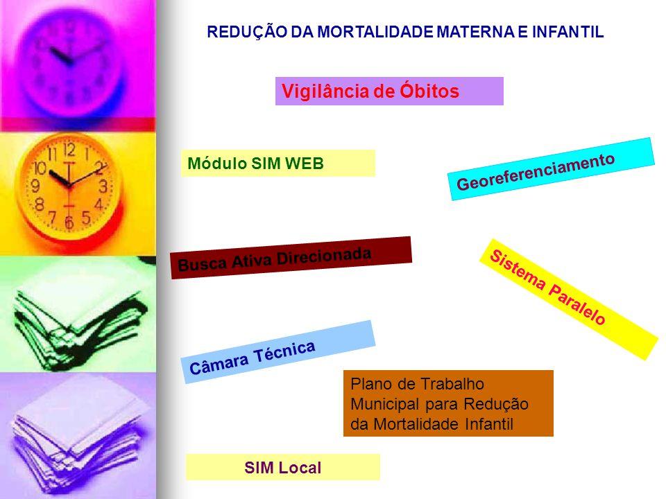 Sistema Paralelo Câmara Técnica SIM Local Módulo SIM WEB REDUÇÃO DA MORTALIDADE MATERNA E INFANTIL Georeferenciamento Busca Ativa Direcionada Vigilânc
