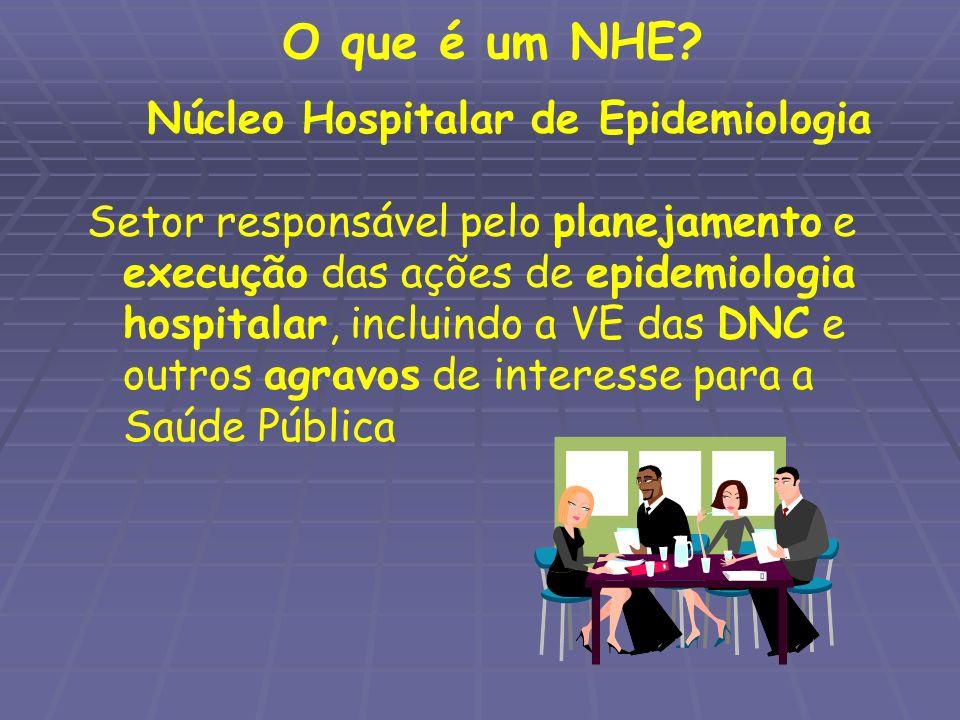 O que é um NHE? Núcleo Hospitalar de Epidemiologia Setor responsável pelo planejamento e execução das ações de epidemiologia hospitalar, incluindo a V