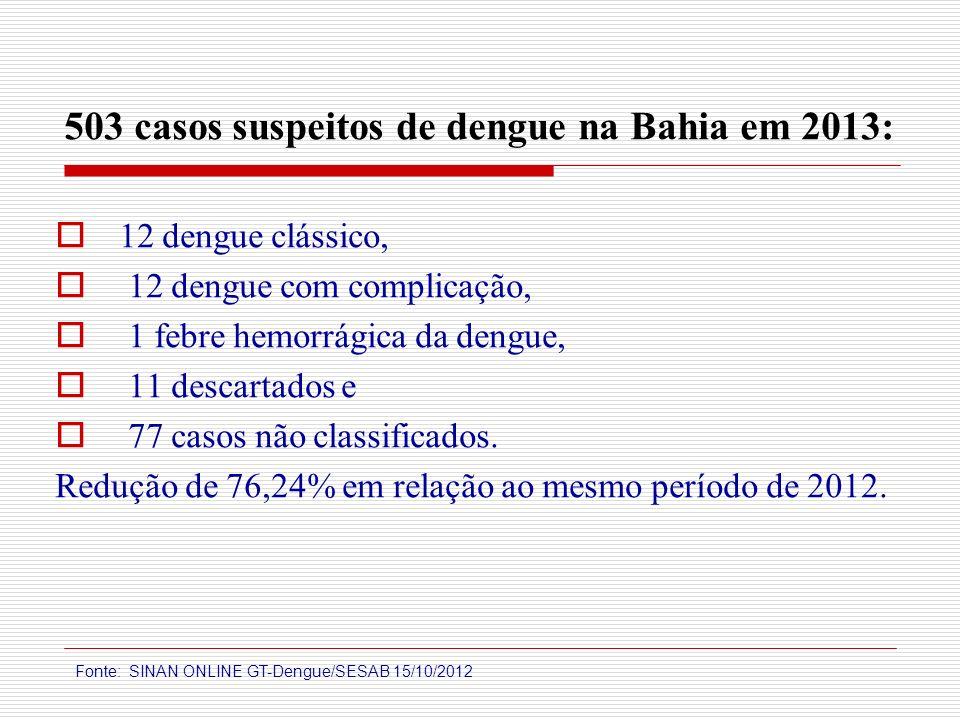 503 casos suspeitos de dengue na Bahia em 2013: 12 dengue clássico, 12 dengue com complicação, 1 febre hemorrágica da dengue, 11 descartados e 77 caso