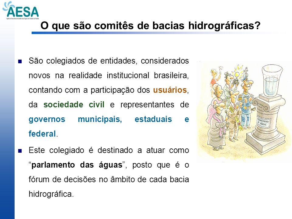 O que são comitês de bacias hidrográficas? São colegiados de entidades, considerados novos na realidade institucional brasileira, contando com a parti