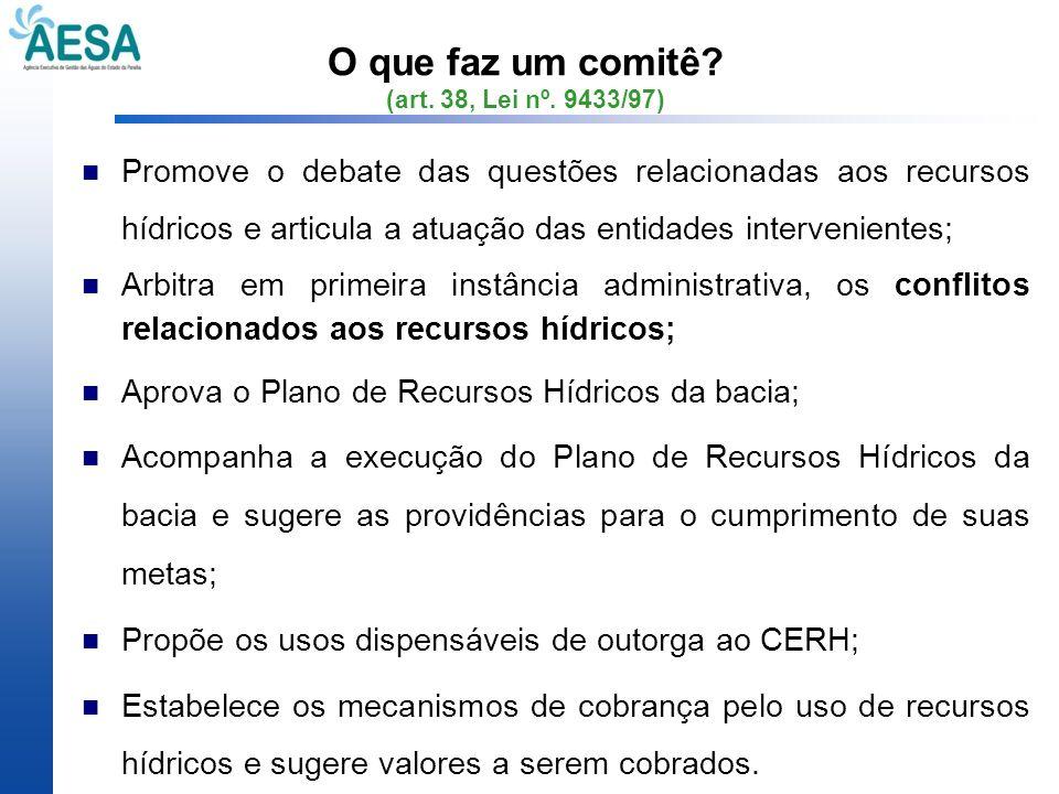 O que faz um comitê? (art. 38, Lei nº. 9433/97) Promove o debate das questões relacionadas aos recursos hídricos e articula a atuação das entidades in
