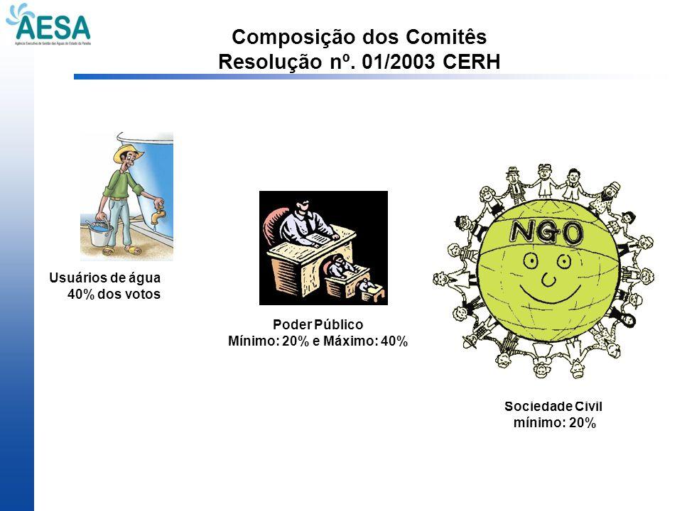 Composição dos Comitês Resolução nº. 01/2003 CERH Usuários de água 40% dos votos Sociedade Civil mínimo: 20% Poder Público Mínimo: 20% e Máximo: 40%
