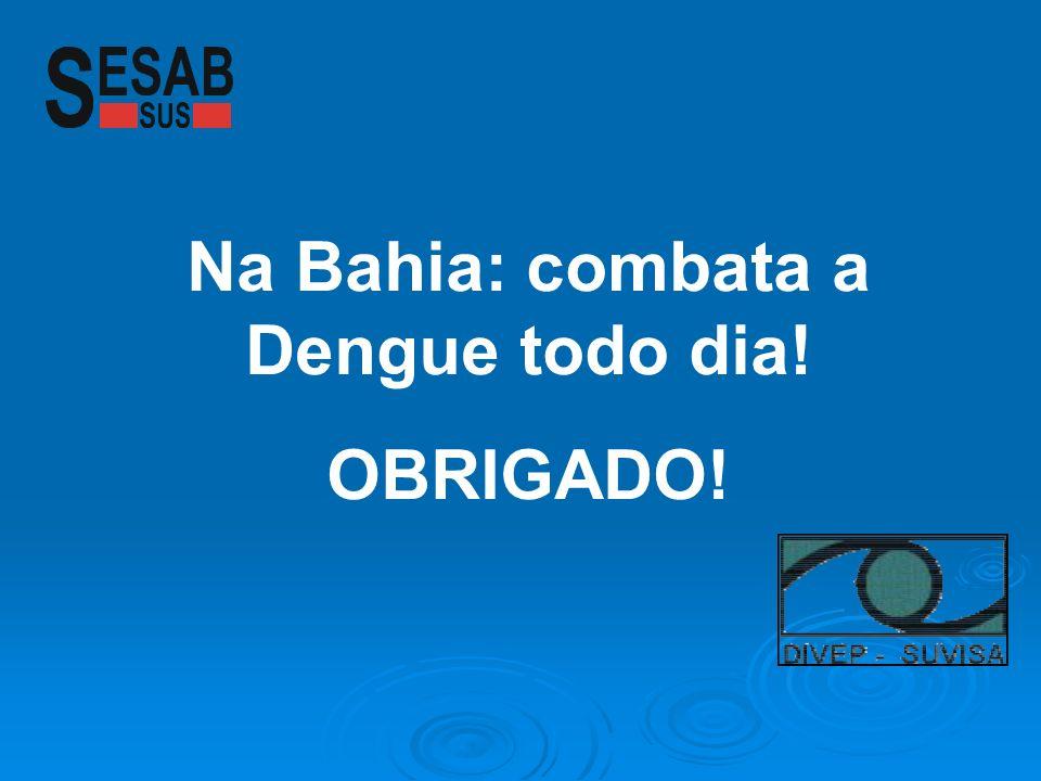 Na Bahia: combata a Dengue todo dia! OBRIGADO!