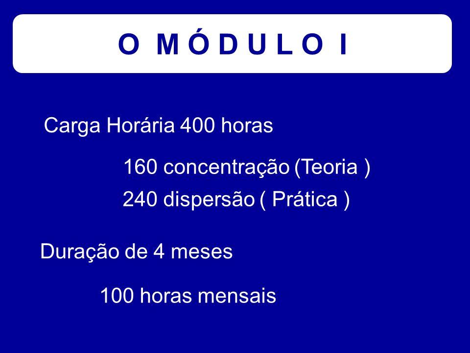 O M Ó D U L O I Carga Horária 400 horas 160 concentração (Teoria ) 240 dispersão ( Prática ) Duração de 4 meses 100 horas mensais