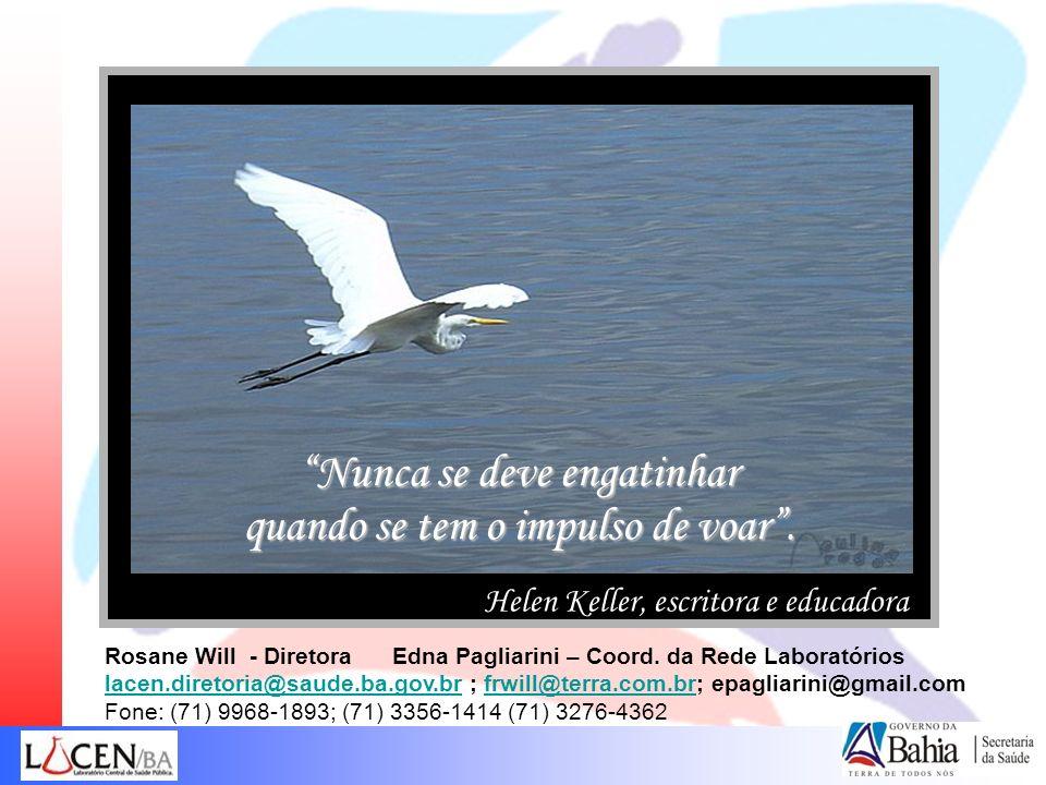 Nunca se deve engatinhar quando se tem o impulso de voar. Helen Keller, escritora e educadora Rosane Will - Diretora Edna Pagliarini – Coord. da Rede