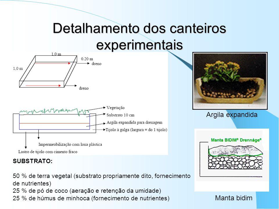 Detalhamento dos canteiros experimentais Argila expandida Manta bidim SUBSTRATO: 50 % de terra vegetal (substrato propriamente dito, fornecimento de n