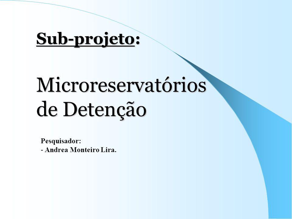 Sub-projeto: Microreservatórios de Detenção Pesquisador: - Andrea Monteiro Lira.