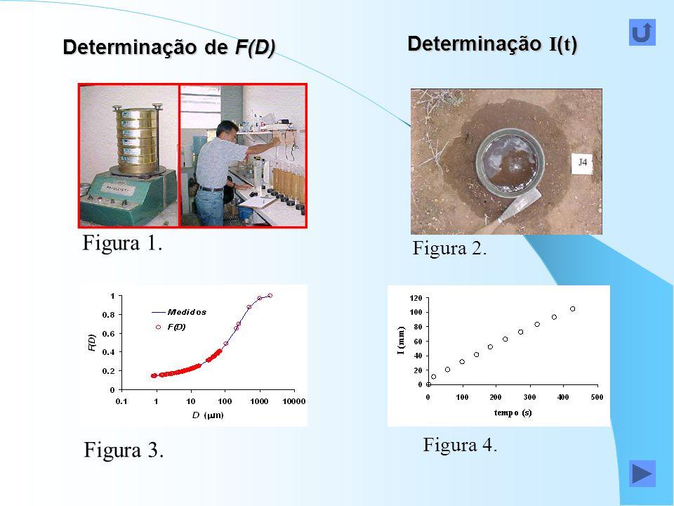 Determinação de F(D) Figura 1. Figura 3. Figura 2. Figura 4. Determinação I ( t )