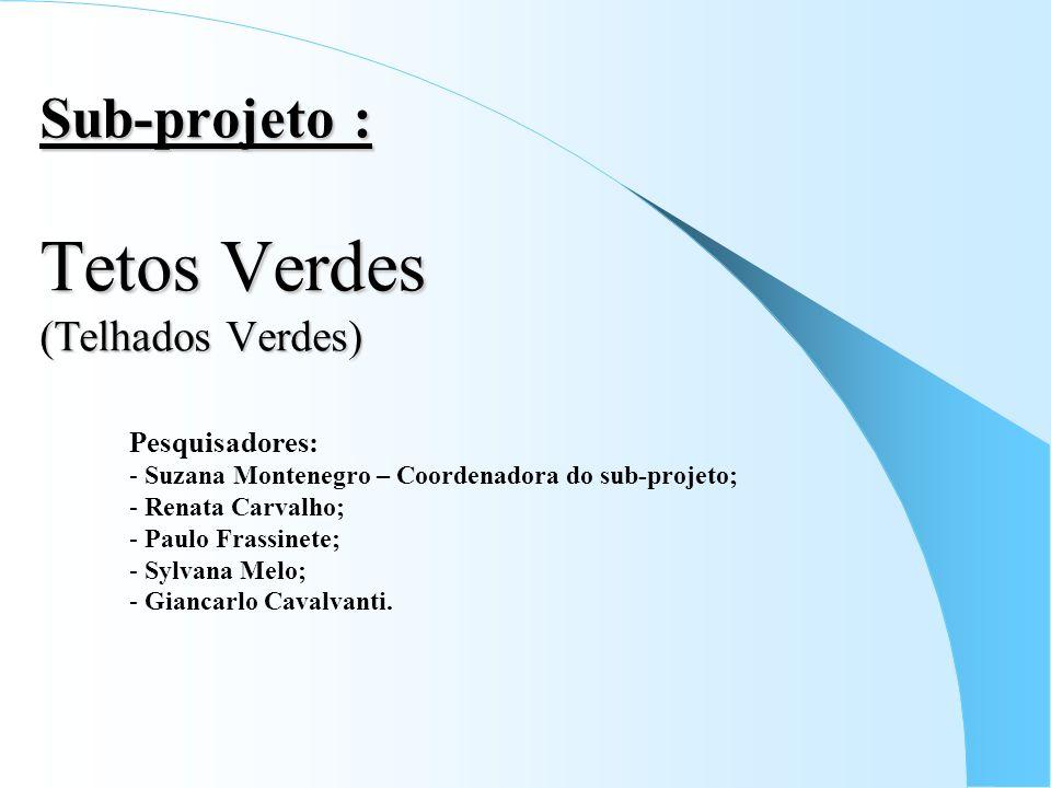 Sub-projeto : Tetos Verdes (Telhados Verdes) Pesquisadores: - Suzana Montenegro – Coordenadora do sub-projeto; - Renata Carvalho; - Paulo Frassinete;