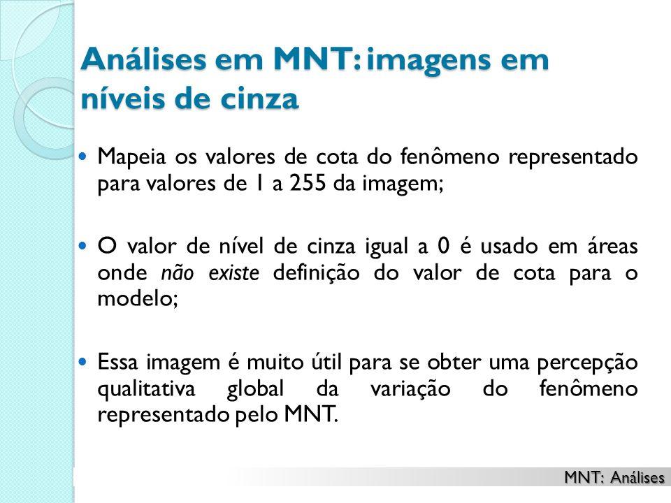 Análises em MNT: imagens em níveis de cinza Mapeia os valores de cota do fenômeno representado para valores de 1 a 255 da imagem; O valor de nível de