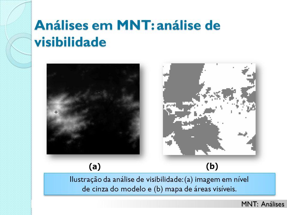 Análises em MNT: análise de visibilidade Ilustração da análise de visibilidade: (a) imagem em nível de cinza do modelo e (b) mapa de áreas visíveis.